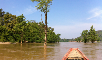 Pilgrimage to the Mekong River Dolphin