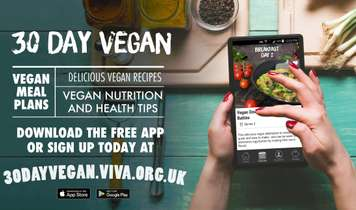 30 Day Vegan App