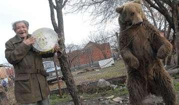 Final Dancing Bears in Bulgaria and SerbiaFree at Last