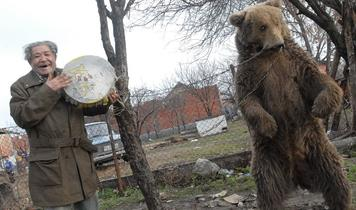 Final Dancing Bears in Bulgaria and Serbia Free at Last