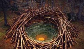 What is Environmental Art?