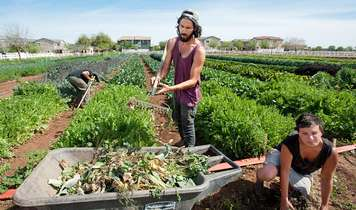 Community-owned farms - restoring land to the people