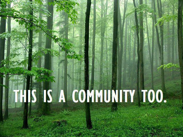 community too