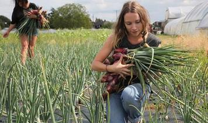 Reimagine agriculture to #rewild the land