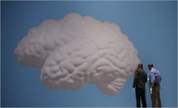 stone_brain-tmagArticle