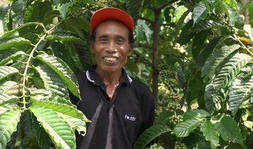 World's 1st Truly Sustainable Coffee: su-re.coffee