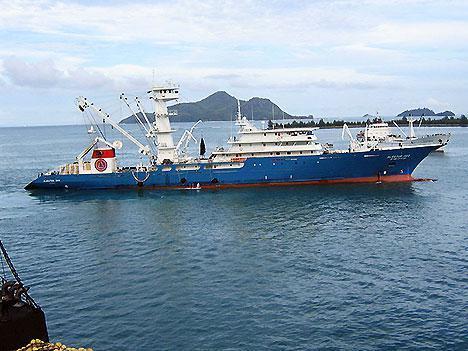 tuna-fishing-boat