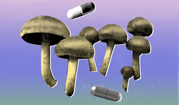 The top 4 health benefits of magic mushrooms