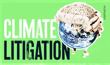 Climate change litigation guide