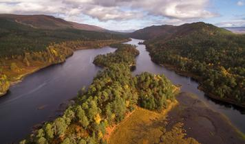Three-quarters of Scots support rewilding